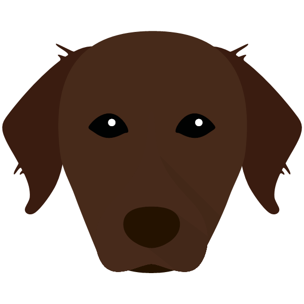chesapeakebayretriever-05 Yappicon