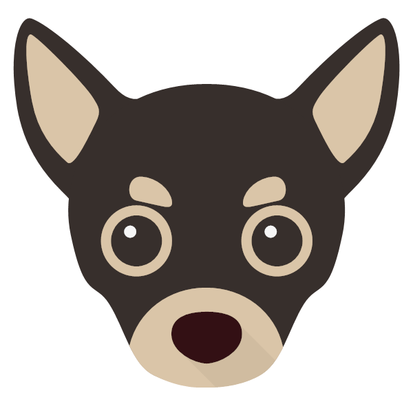 Coco icon