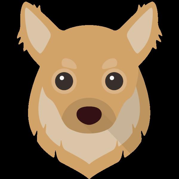 Toto icon