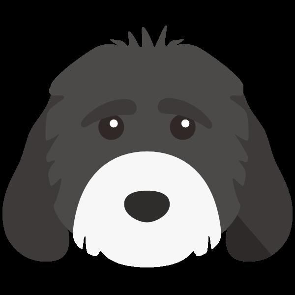 Porcha icon