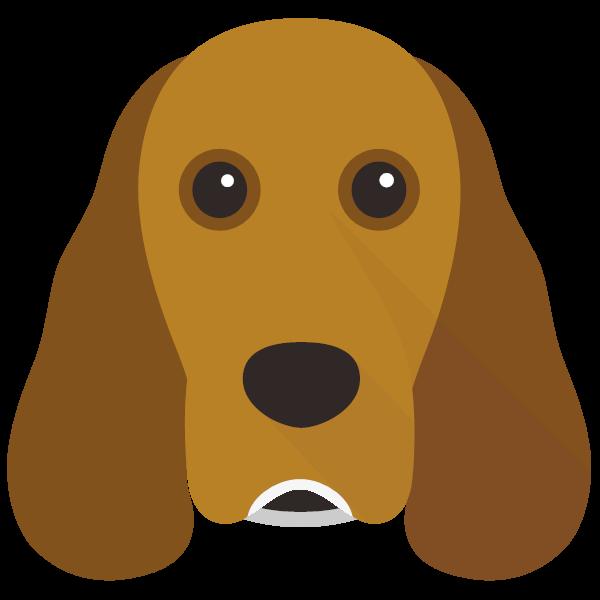 Darwin icon