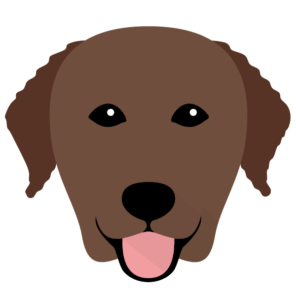 curlycoatedretriever-01 Yappicon
