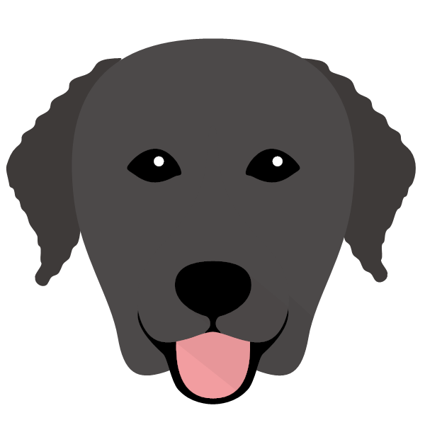 curlycoatedretriever-02 Yappicon