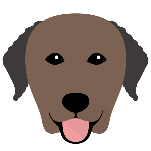 curlycoatedretriever-03 Yappicon