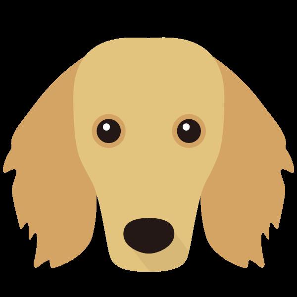 Casey icon