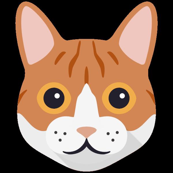Ollie icon