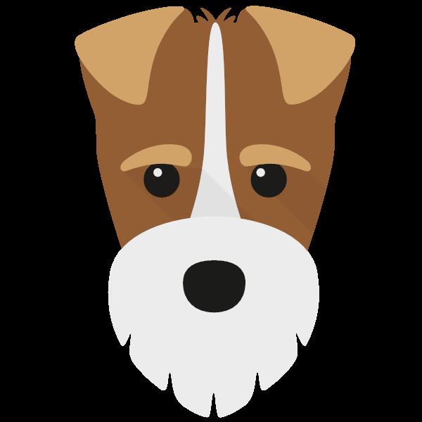 Finlay icon