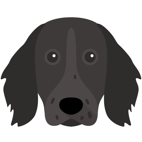 germanlonghairedpointer-02 Yappicon