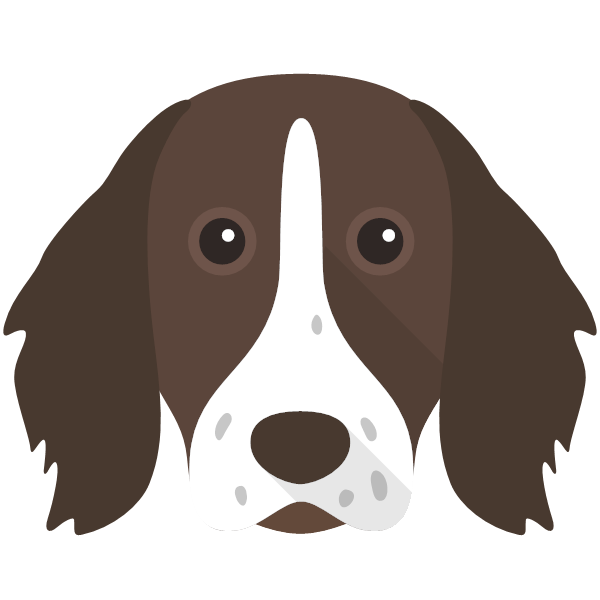 germanlonghairedpointer-04 Yappicon