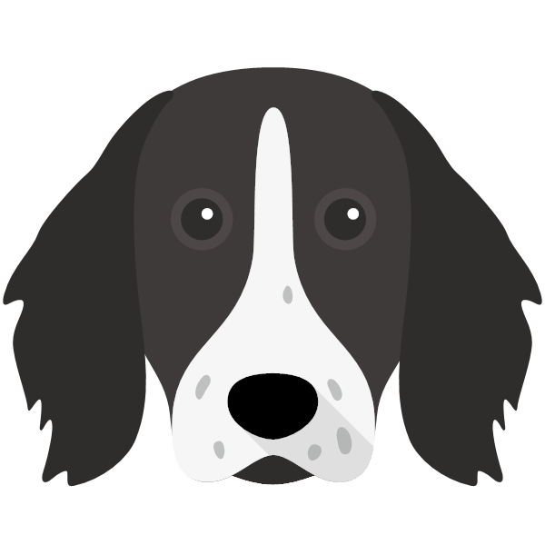 germanlonghairedpointer-05 Yappicon