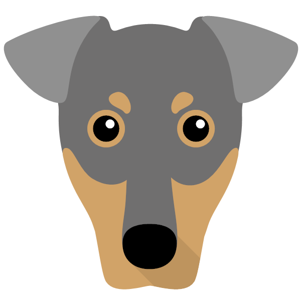 germanpinscher-04 Yappicon