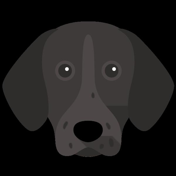 Kaiser & Shadow icon