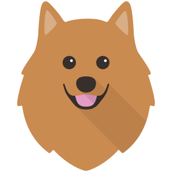 the German Spitz