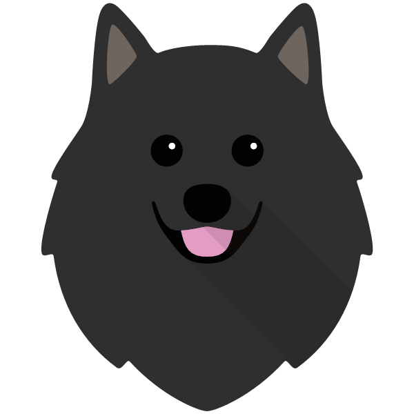 germanspitz-04 Yappicon