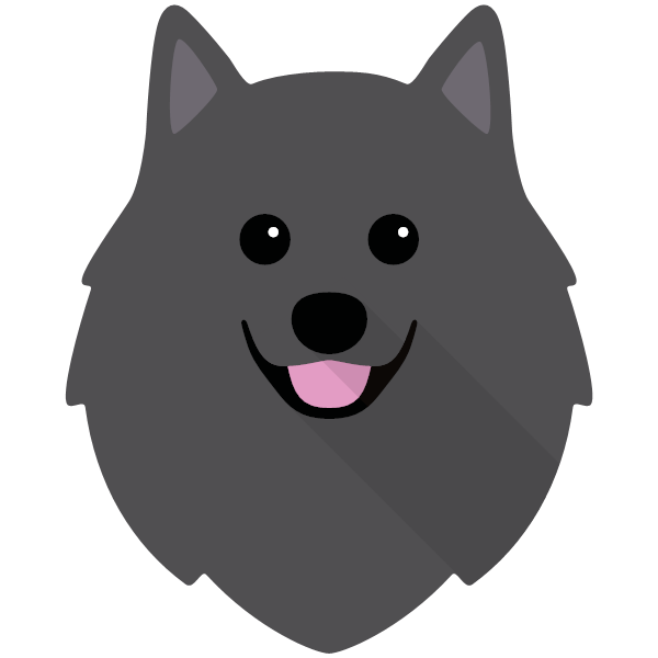 germanspitz-05 Yappicon