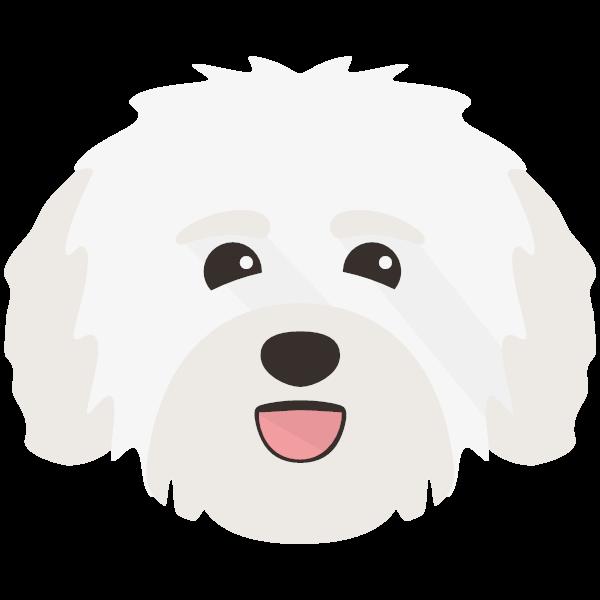 Pippa icon
