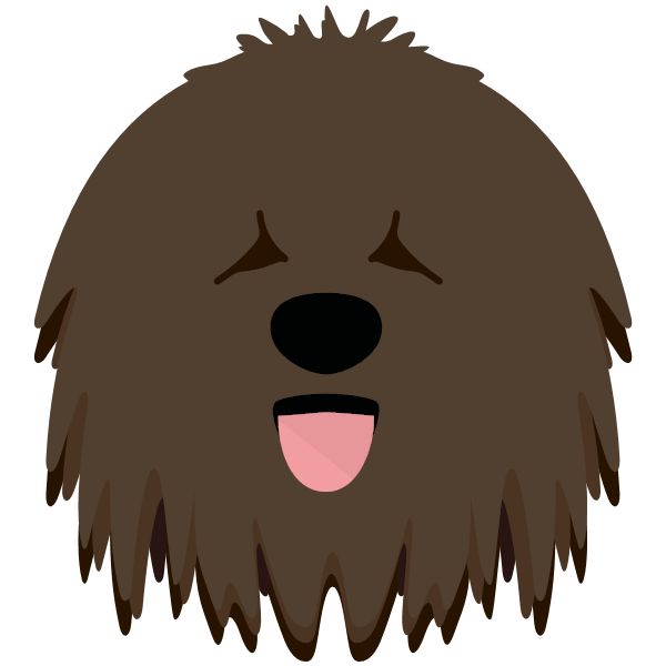 the Hungarian Puli