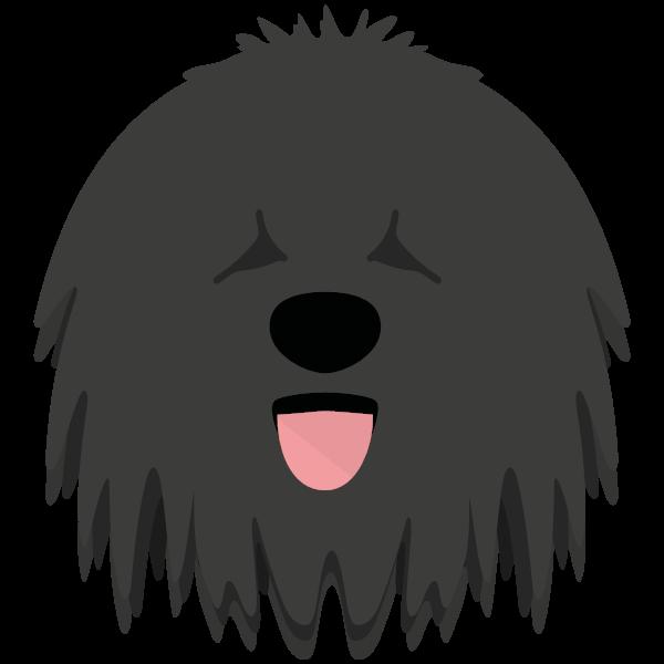 Quigley icon