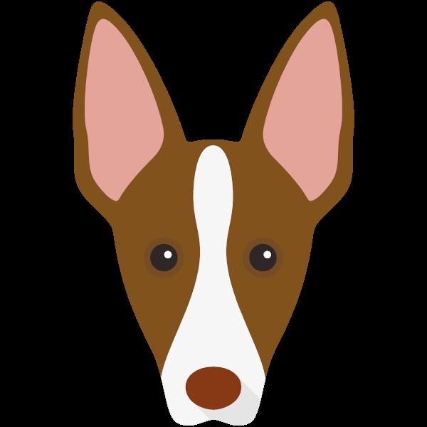 ibizanhound-02 Yappicon
