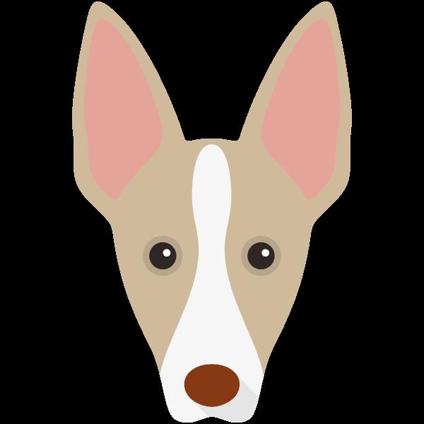 ibizanhound-03 Yappicon
