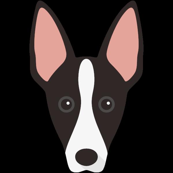 ibizanhound-04 Yappicon