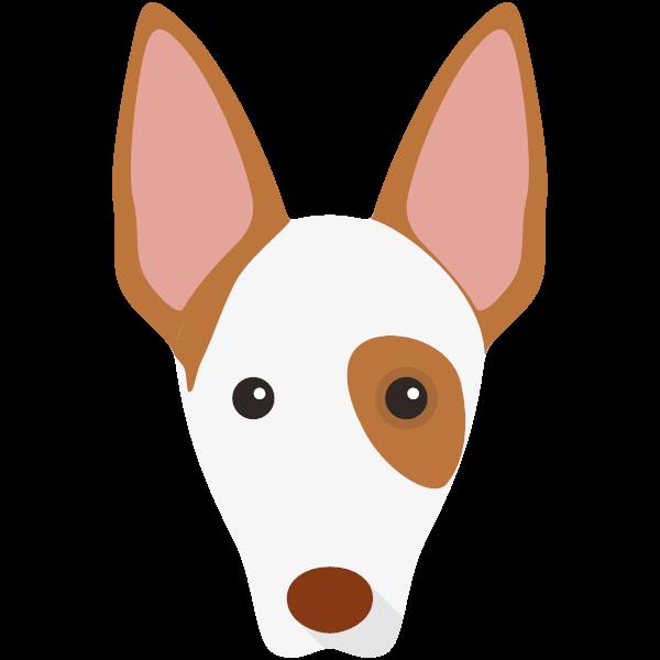 ibizanhound-05 Yappicon