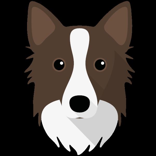 icelandicsheepdog-04 Yappicon