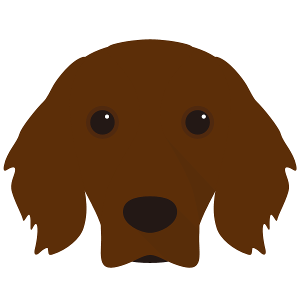 Kodi icon