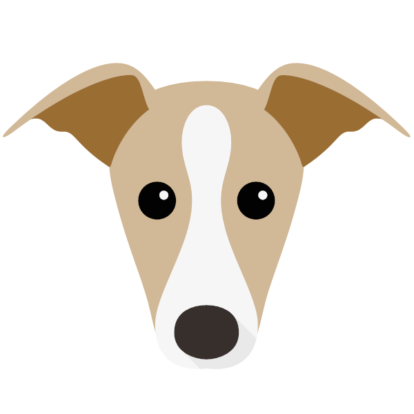 italiangreyhound-01 Yappicon