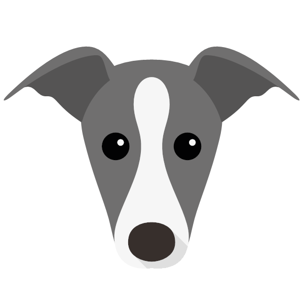 italiangreyhound-02 Yappicon