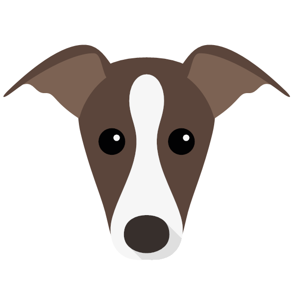 italiangreyhound-03 Yappicon