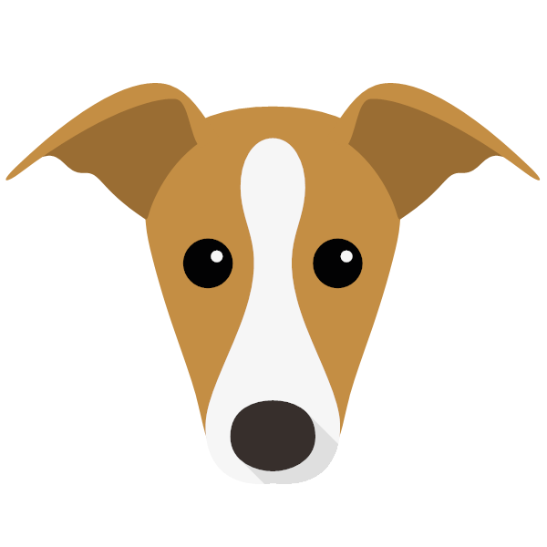 italiangreyhound-04 Yappicon