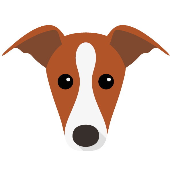 italiangreyhound-05 Yappicon