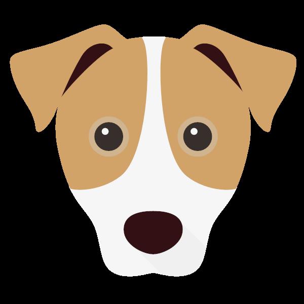 Bailey icon