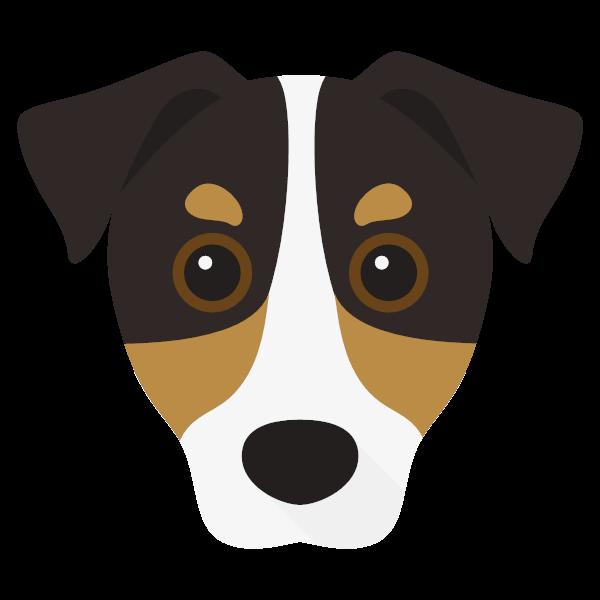 Jordy icon