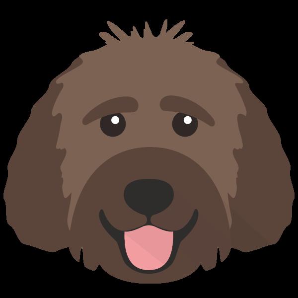 Bertie icon