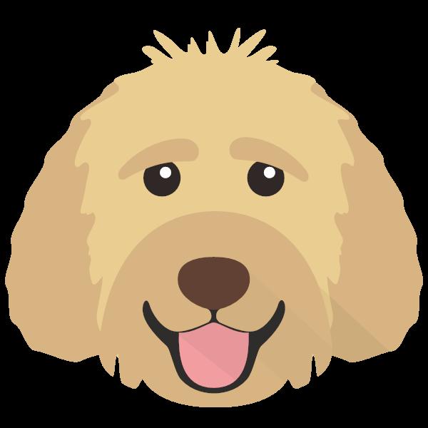 Brosko icon