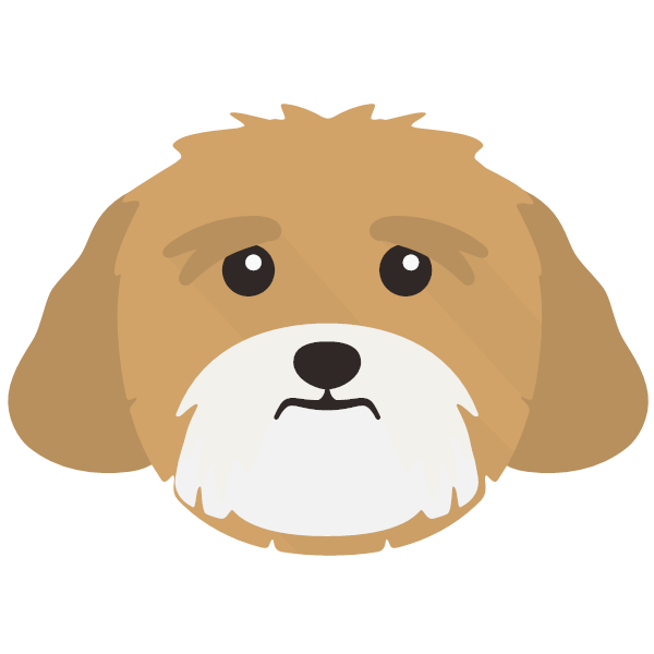 lhasaapso-04 Yappicon