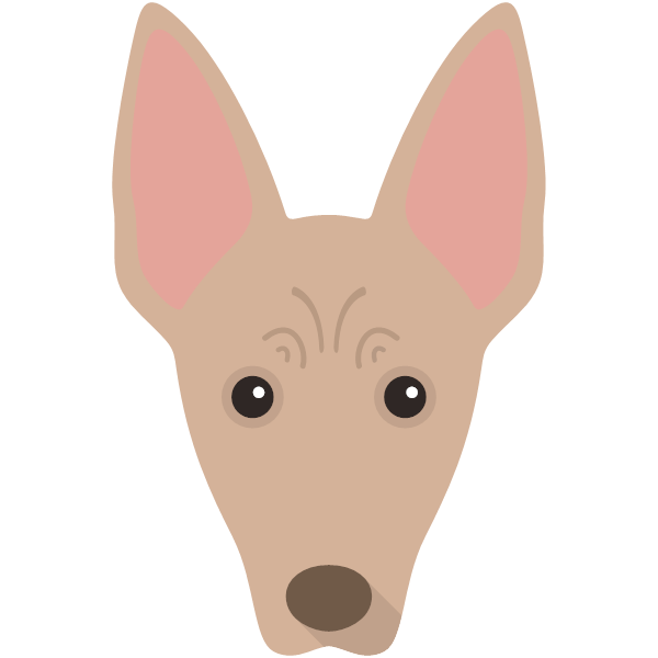 mexicanhairless-02 Yappicon