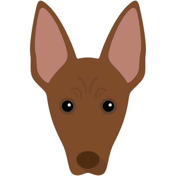 mexicanhairless-03 Yappicon