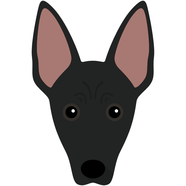 mexicanhairless-04 Yappicon