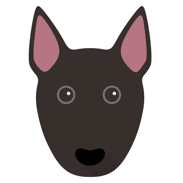 miniaturebullterrier-02 Yappicon