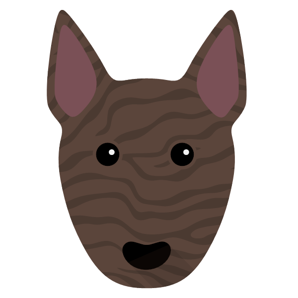 miniaturebullterrier-04 Yappicon