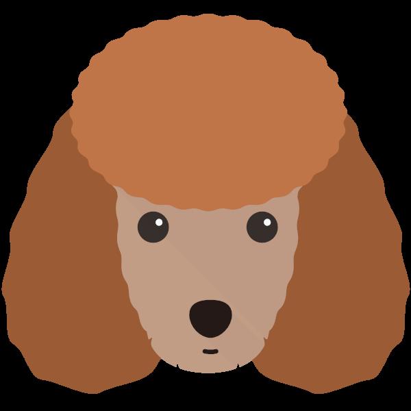 Molly icon