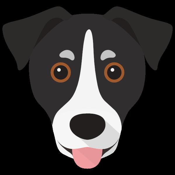 Lola icon