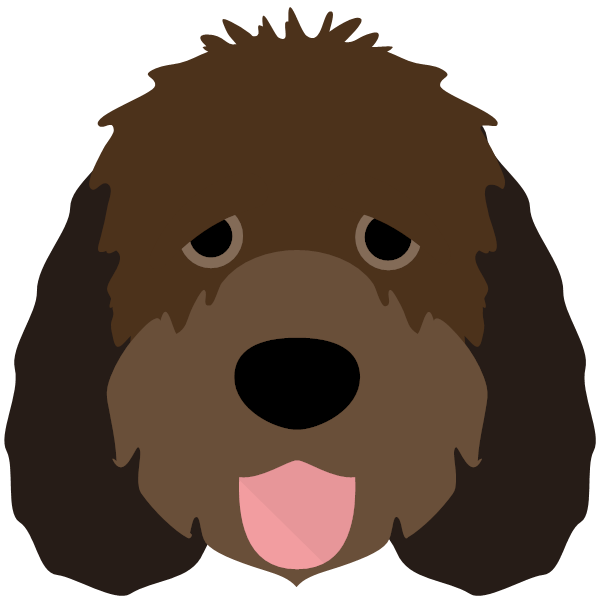 otterhound-01 Yappicon