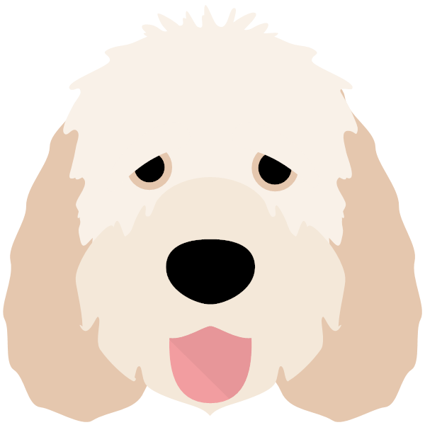 otterhound-05 Yappicon