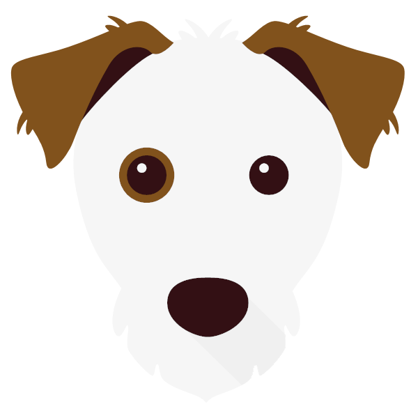 Pepe icon