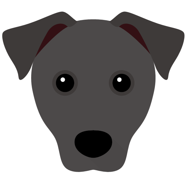 patterdaleterrier-01 Yappicon