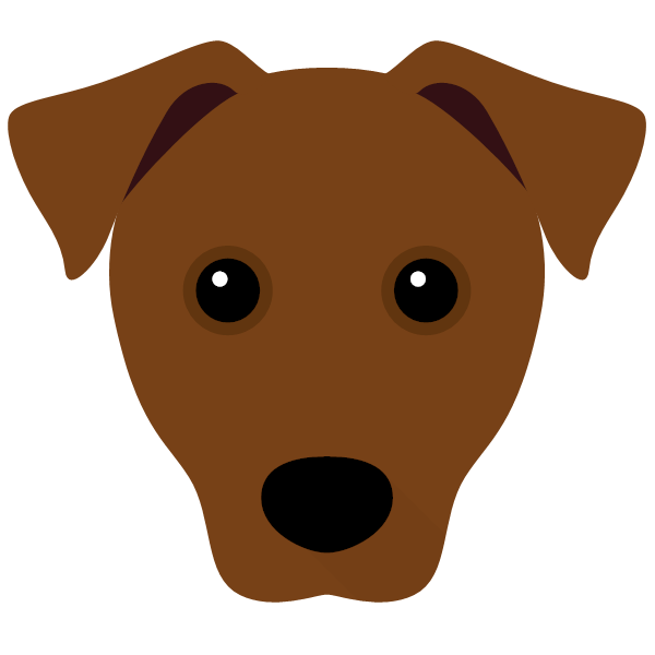 patterdaleterrier-04 Yappicon